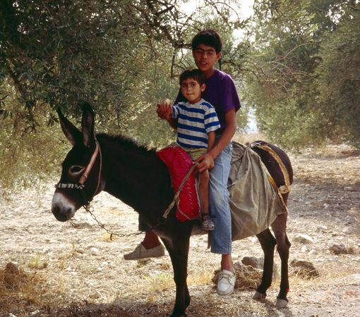 Road to Nablus 2
